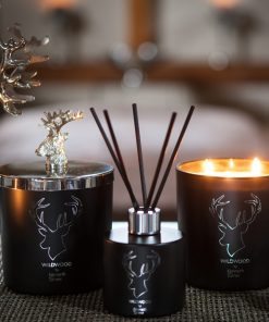 Wildwood candles and reed diffuser